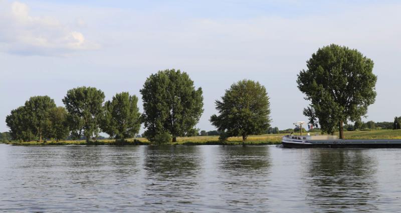 Wandelen langs de Maas